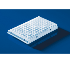 96-well PCR plate, non-skirted, standard profile, elevated rim, white, blue coding
