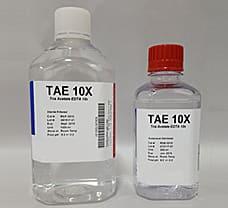 10X TAE