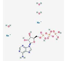 Adenosine-5'-Triphosphate Trihydrate