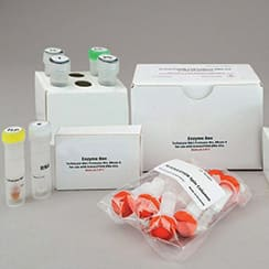 Cell Culture Kits