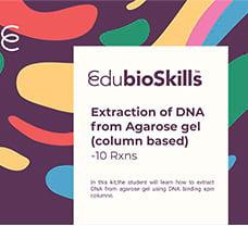 Extraction of DNA from Agarose gel(column based) Teaching kit