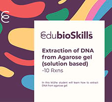 Extraction of DNA from Agarose gel(solution based) Teaching kit