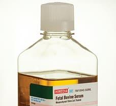 Fetal Bovine Serum, Mesenchymal Stem Cell Tested, USDA Approved, Sterile filtered