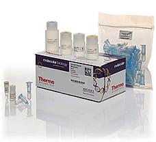 GeneJET Plasmid Miniprep Kit, 250 prep