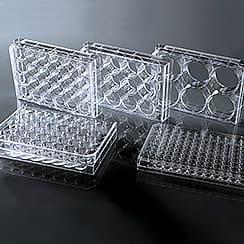 Micro-Test Plate
