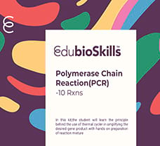 Polymerase Chain Reaction(PCR) Teaching kit