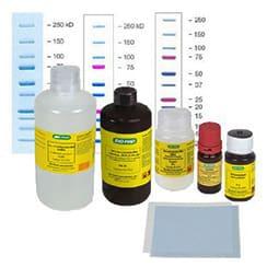 Protein Electrophoresis Biochemicals