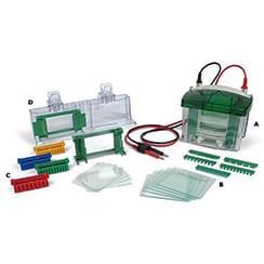 Protein Electrophoresis Kits