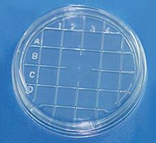 Sterile Disposable Scored Top Petri Plates, 55 X 12 mm-PW1187G-4x25NO