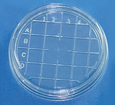 Sterile Disposable Scored Top Petri Plates, 55 X 12 mm-PW1187-20x25NO