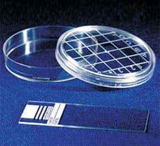 Sterile Disposable Scored Top Petri Plates, 65 X 12 mm-PW007-1x100NO