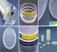 Tissue culture dish  100 mm