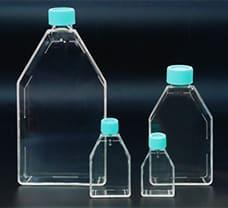 Tissue Culture Flask Close cap, 25 ml -TCG1-20x10NO