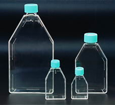 Tissue Culture Flask Close cap, 600 ml-TCS7-8x5NO