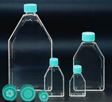 Tissue Culture Flask vented cap, 250 ml-TCS6-10x5NO