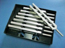 Tunning Fork Welch Type (Set of 8)